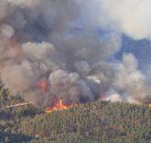 mount_carmel_forest_fire14