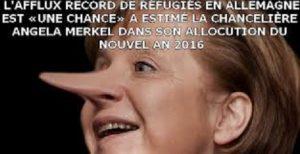 lafflux-record
